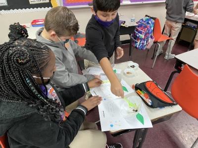 STEM's 3rd Graders Learn about Pollination